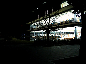 350x262library